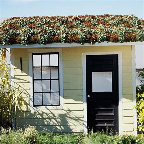 Living Roof Shed by Green Roof Garden Sheds With Living Roofs