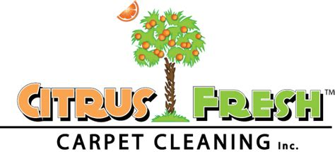 Upholstery Cleaning Charleston Sc by Citrus Fresh Carpet Cleaning 8 Photos Cleaning