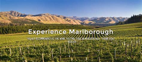 tastings tours short north marlborough wine beer tasting tours hop n grape
