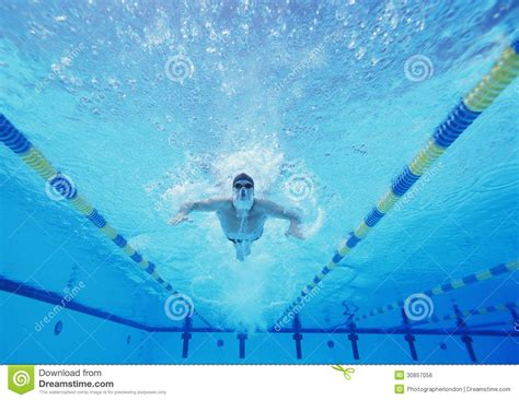 Underwater Wall Mural underwater shot of male swimmer swimming in pool royalty