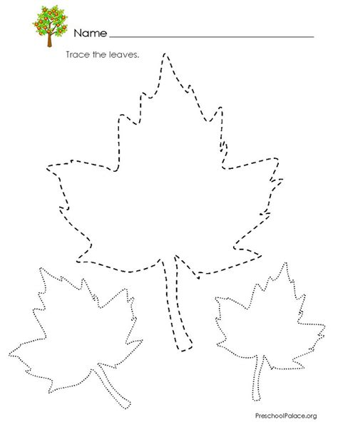 printable leaves for preschool 96 best tracing worksheets images on pinterest tracing
