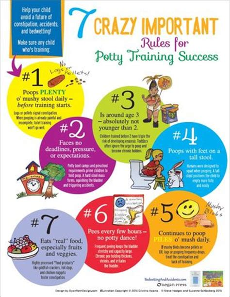 7 Tips On Potty Your Child by 7 Important For Potty Success Parents