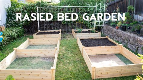 steps  building   raised garden beds home