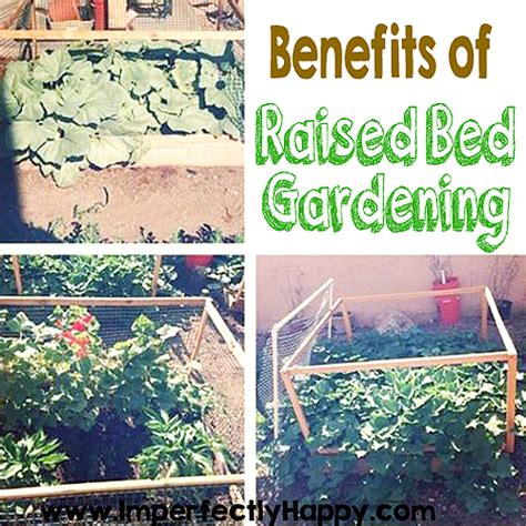 benefits of raised bed gardening raised garden bed benefits imperfectly happy