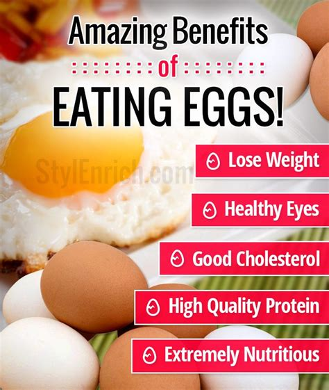 eating eggs before bed atanbiyi gabriel amazing benefits of eating eggs that you