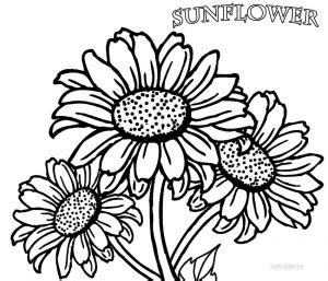 sunflower garden coloring page printable sunflower coloring pages for kids cool2bkids