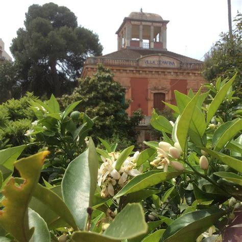 ste antiche fiori ville antiche mare e fiori ovunque 232 santo spirito il