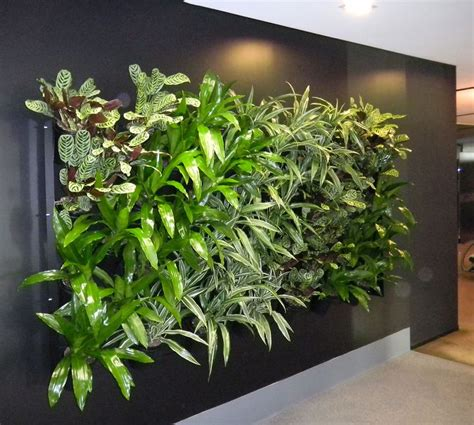 interior plant wall 1000 images about green walls on pinterest