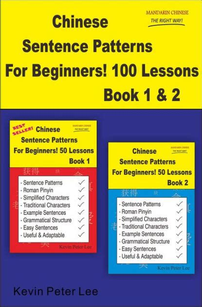 sentence patterns book chinese sentence patterns for beginners 100 lessons book