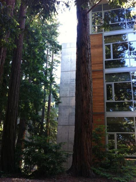 craigslist santa cruz housing just a classroom ucsantacruz ucsc santacruz redwoods uc santa cruz pinterest