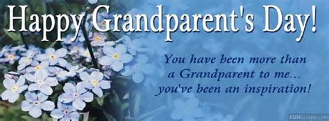 a handbook for grandparents 700 creative things to do and make with your grandchild books grand parent quotes for quotesgram