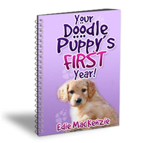 Your Doodle Puppy S Year Edie Mackenzie