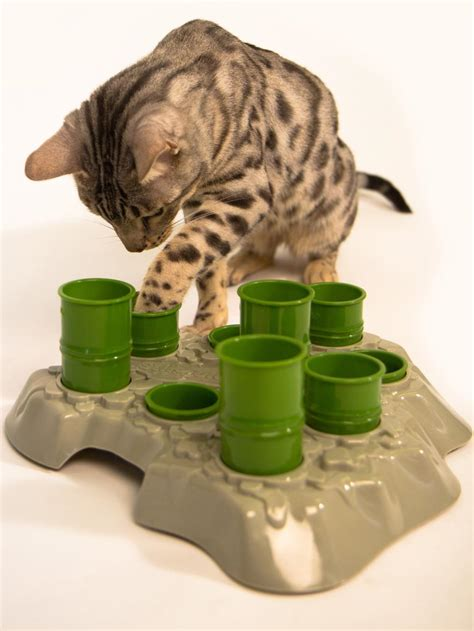 the best toys the best toys for playful cats and dogs diy