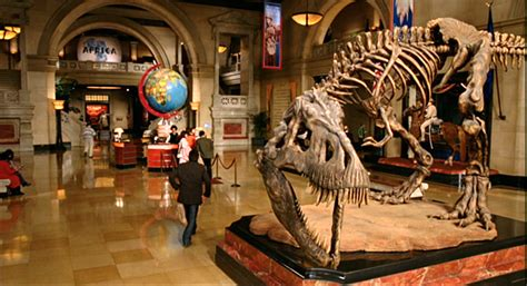 night at the museum tour american museum of natural history 301 moved permanently
