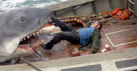 jaws orca boat remains jaws 1975 part 2 episode 19 decades of horror 1970s