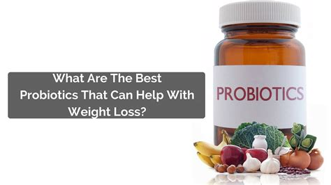 the best probiotics what are the best probiotics for weight loss