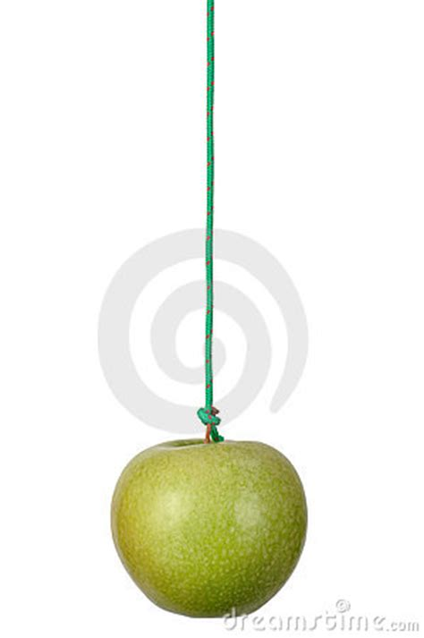 apple on a string stock photo image 16153600