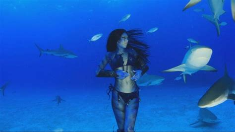 baby shark real life real life mermaid swims with the sharks video abc news