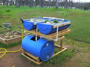 hydroponics systems with fish an post about backyard