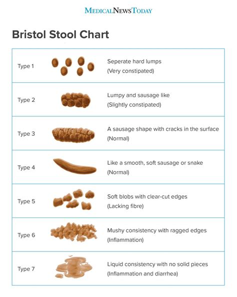 What Is The Normal Colour Of Stool by What Are The Different Types Of And What Do They Tell