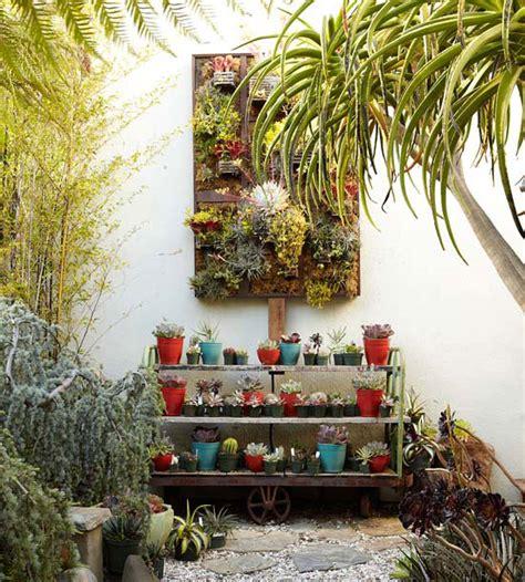 decorar con plantas un patio 15 ideas econ 243 micas para decorar tu patio