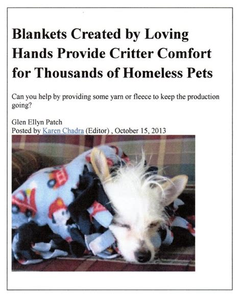 critter comfort cfc in the news comfort for critters