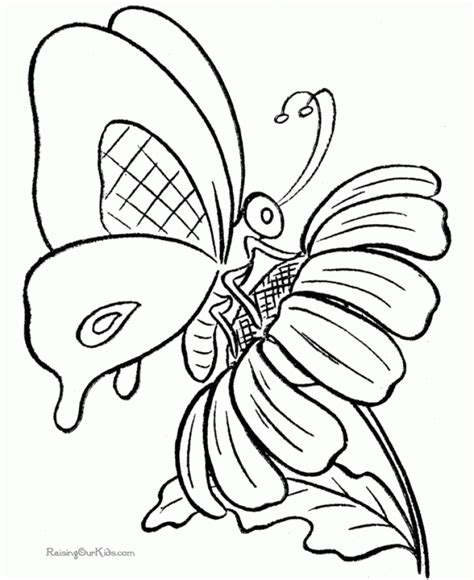 butterfly coloring pages that you can print get this butterfly coloring pages printable 9102