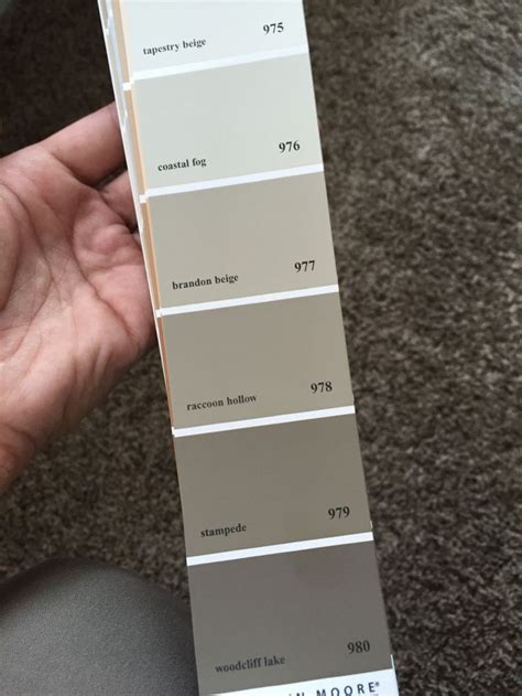 how to match paint color best 25 benjamin moore beige ideas on pinterest
