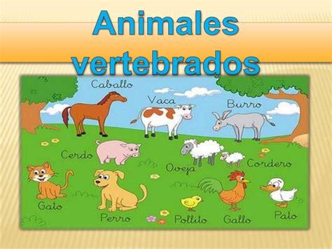 imagenes de animales vertebrados wikipedia power animales vertebrados