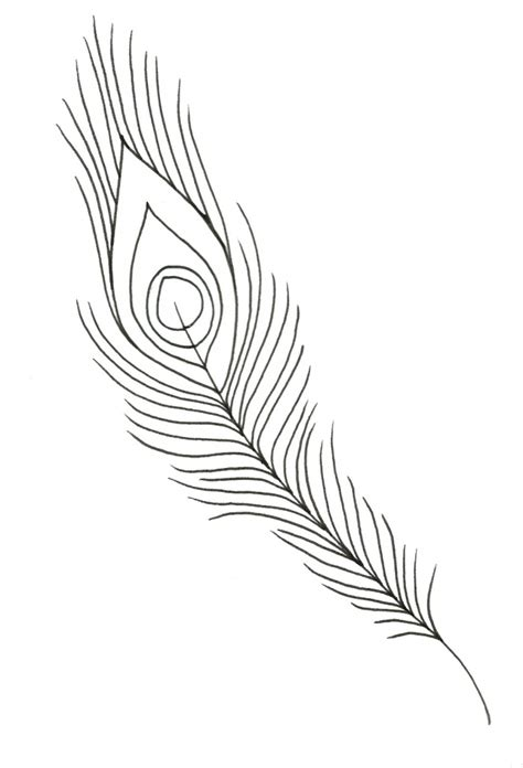 coloring pages of peacock feathers peacock feather coloring page www imgkid com the image