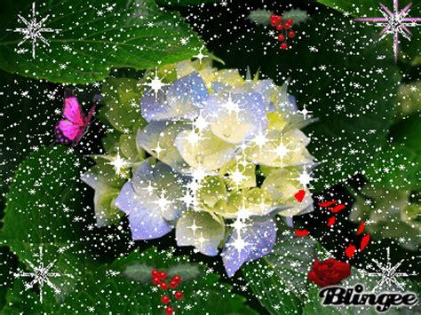 imagenes de flores que brillan la flor mas hermosa picture 118919498 blingee com