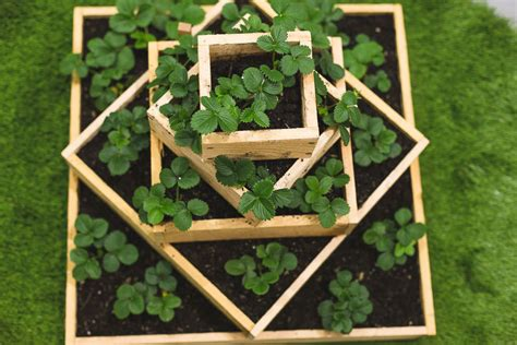 Build A Strawberry Planter by How To Build A Strawberry Planter Home Improvement