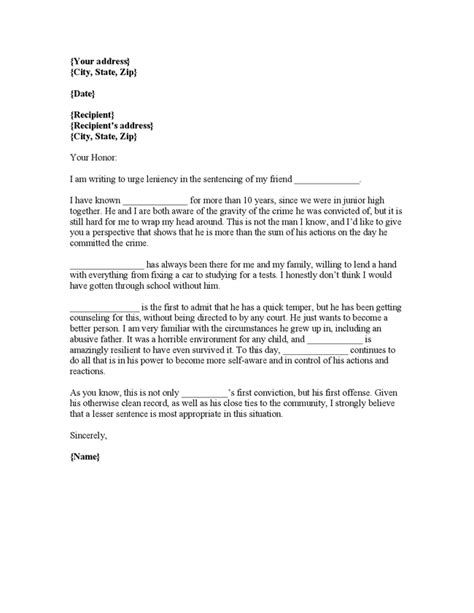 letter to the court template 7 top character reference letter template character