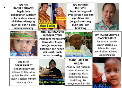 Brainking Plus Testimoni brainking plus amanah shop