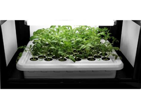 Hydroponic Grow Closets by Supercloset Deluxe 600watt Co2 Ro200 Hydroponic Grow Box