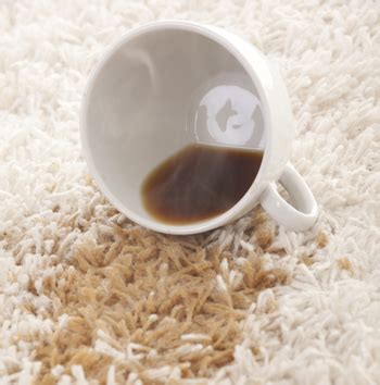 removing coffee stains from upholstery removing coffee stains from carpet excellent carpet cleaning