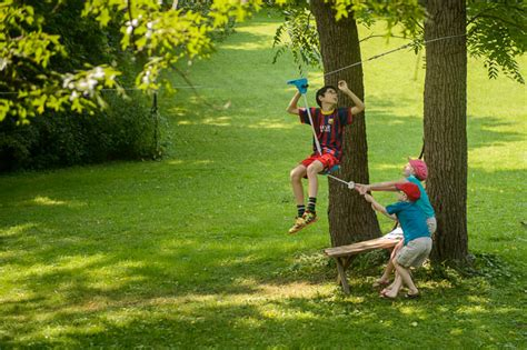 backyard ziplines jeffrey friedl s blog 187 more summer trip fun zipline in