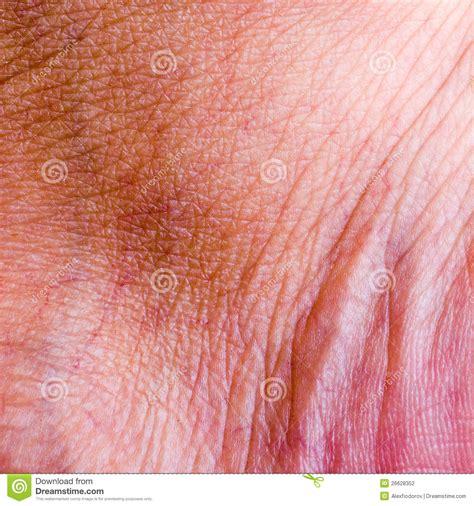 human skin background macro stock photo 366722105 human skin closeup background stock photo image 26628352