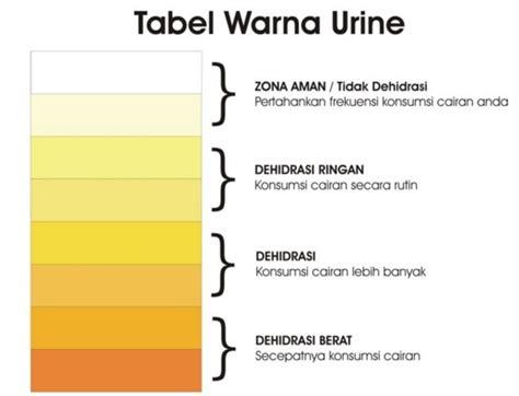 Warna Air Kencing Wanita Hamil Muda Air Seni Berwarna Kuning Penyebab Gejala Penyakit