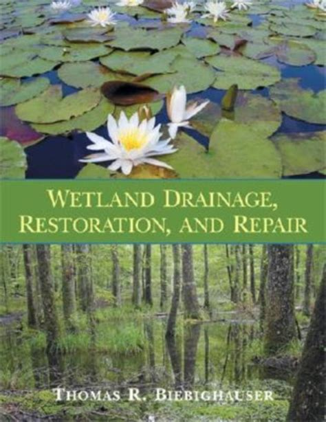 Bol Com Wetland Drainage Restoration And Repair