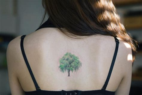 small willow tree tattoo 40 achingly beautiful tree tattoos tattooblend