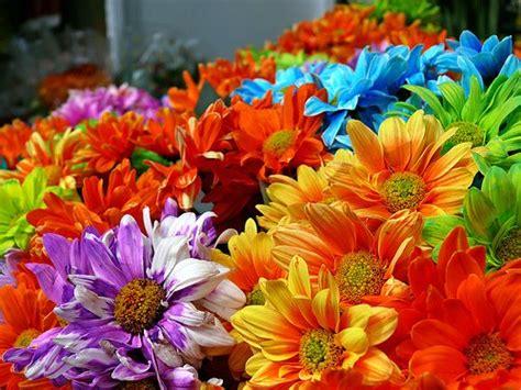 flower power hippie couture