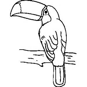 toucan mask colouring pages