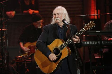 david crosby child etheridge chose crosby over pitt as sperm donor ny daily