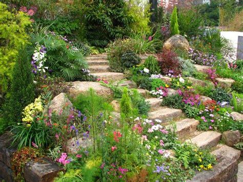 Rocaille En Pente by Plante De Rocaille Conseils D Am 233 Nagement Du Jardin Et