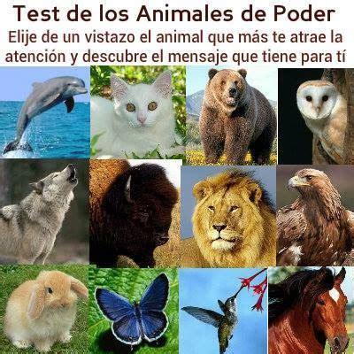 imagenes animal espiritual test de los animales de poder psicolog 237 a integral