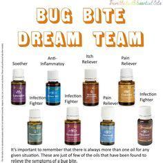 essential oils for bed bug bites insect bites on pinterest