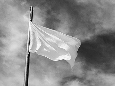 imagenes de banderas blancas burdel del delirio mi bandera blanca