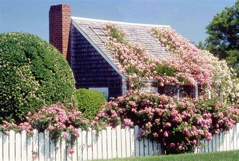 Rosa Cottage by Martha S Vineyard Ma Usa On Gingerbread