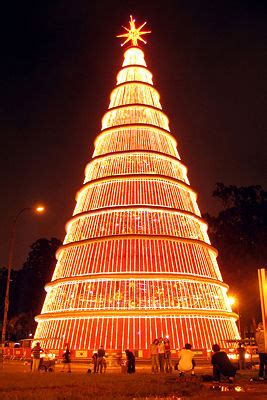 christmas tree of lights in sao paulo brazil christmas